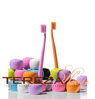 TOOTHBRUSH HOLDER CURAPROX  | Tereza Shop