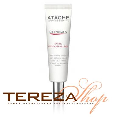 DESPIGMEN SPECIFIC ANTI-TACHES SOLUTION ATACHE | Tereza Shop